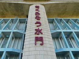 Sakurasosuimon1