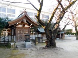 Ryokeinari1