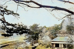 Koishikawa_bashoanx