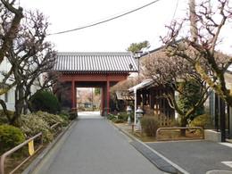 Kitaurawa_kakushinji1