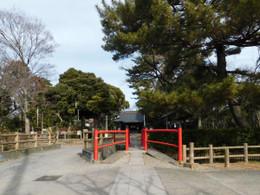Tajima_hikawa1
