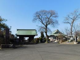 Misato_teishoji1