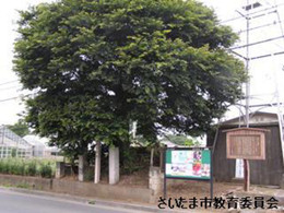 Hizakoichiri