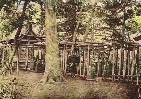Takuzousu01c