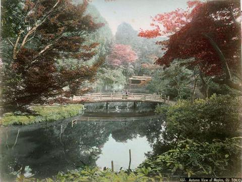 Ojitakinogawa57