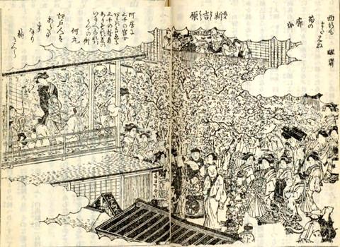 Yoshiwarasakura