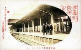 Asakawa34c