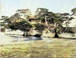 Matsushima_meijic
