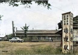 Kikyo31c