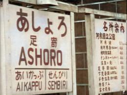 Ashoro1c