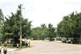 Yokohamapark6c