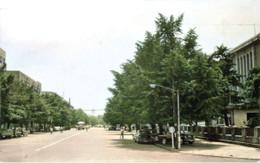 Yokohamapark7c