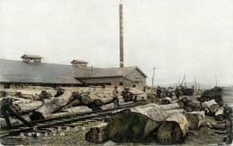 Rumoi188c