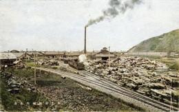 Rumoi189c