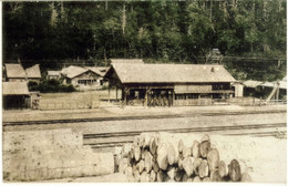 Teshio181c