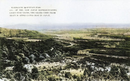 Karikachi181c