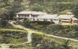 Kawakumi184c