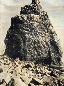 Teuri185c