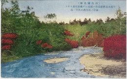 Kawayu191