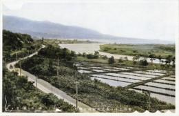 Tarukishi191c