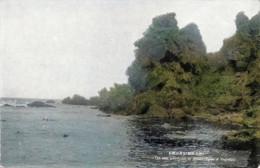 Yagishiri185c