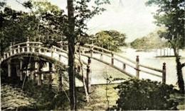 Ohnuma195c