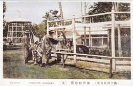 Yunokawa212c