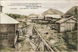 Kawayu233c