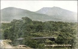 Koikawa212c
