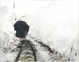 Otaru194c