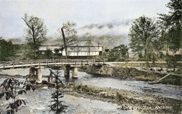Onneyu186c