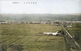 Bifuka271c