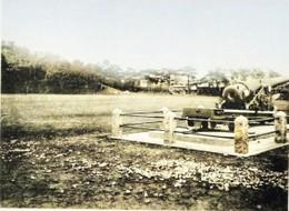 Hakodate281c