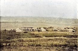 Honbetsu283c