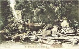 Honbetsu288c