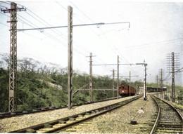 Oji291c