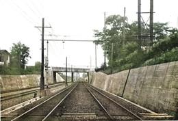 Urawa295c