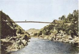 Katsuragawa331c