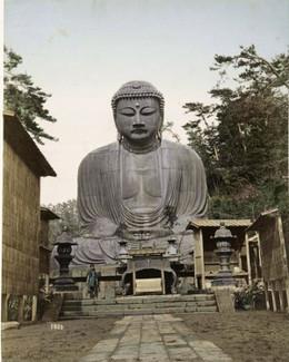 Kamakura311