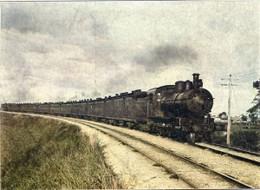 Train367c