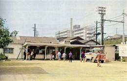 Shinkoyasu501c