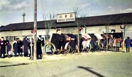 Sendai295c