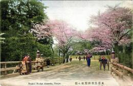 Benkei191c