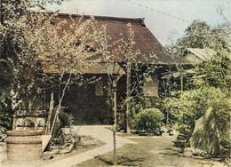 Kurozukayama1cc