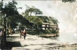 Yokohama255c