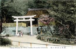 Yokohama256c