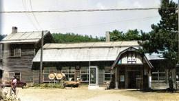 Ozawa571c