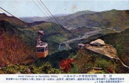 Nikko367