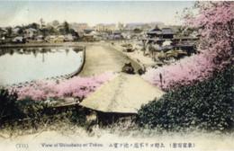 Shinobazu915c
