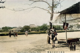 Shinobazu951c